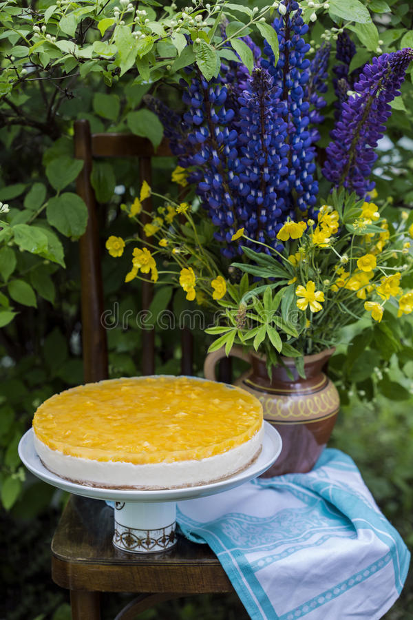 Owoc tort z brzoskwinią, galaretą i mousse, zdjęcia royalty free