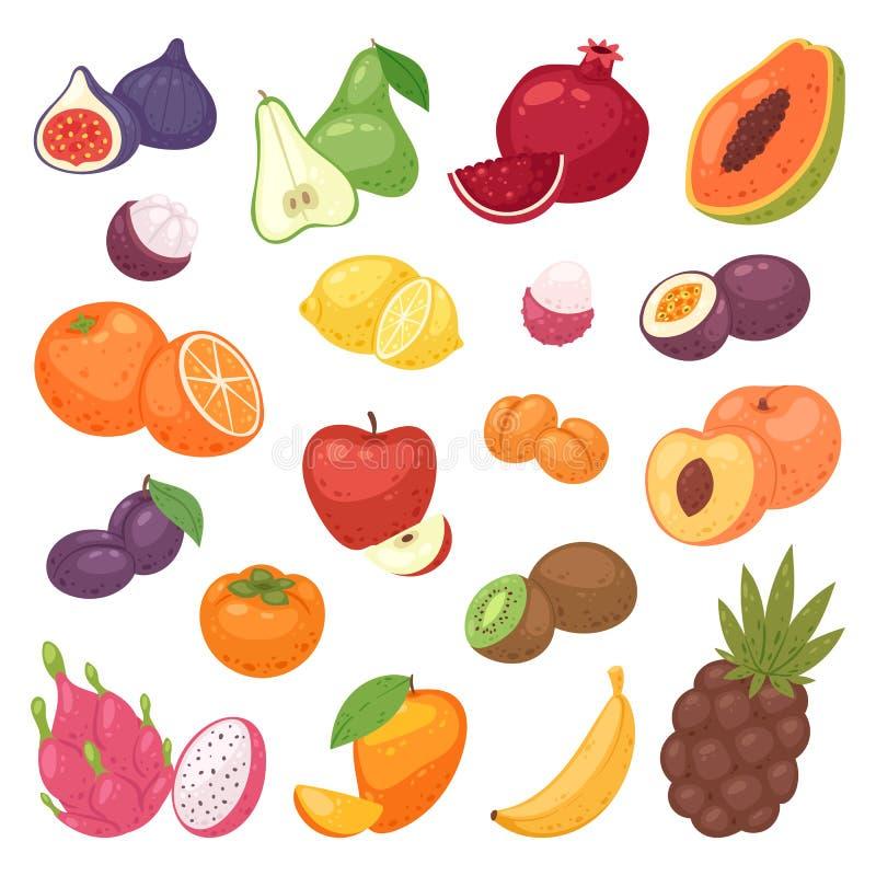 Owoc wektorowy fruity jabłczany banan i egzota melonowiec z świeżymi plasterkami tropikalny dragonfruit lub soczysta pomarańcze royalty ilustracja