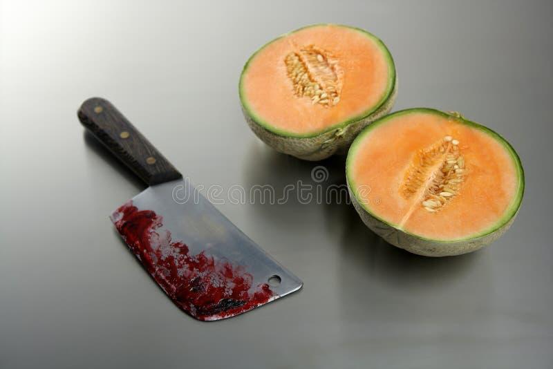 owoc zabić nożowego melon zdjęcie royalty free