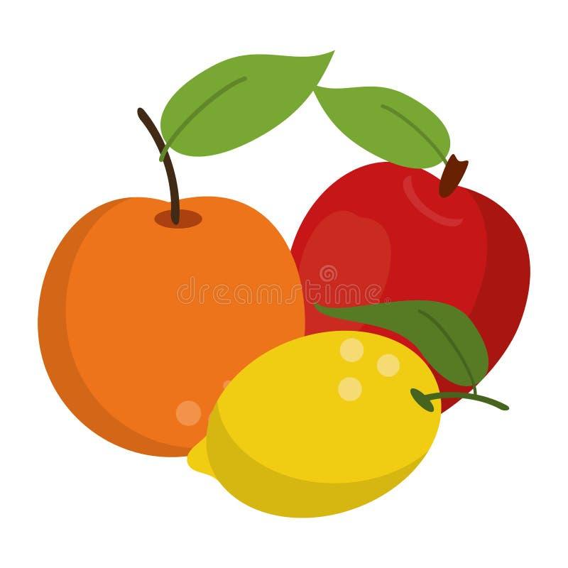 Owoc zdrowe i świeża żywność ilustracji