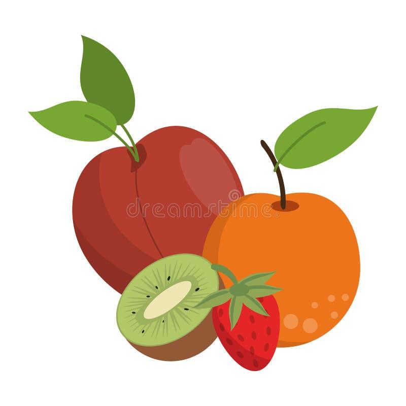 Owoc zdrowe i świeża żywność royalty ilustracja