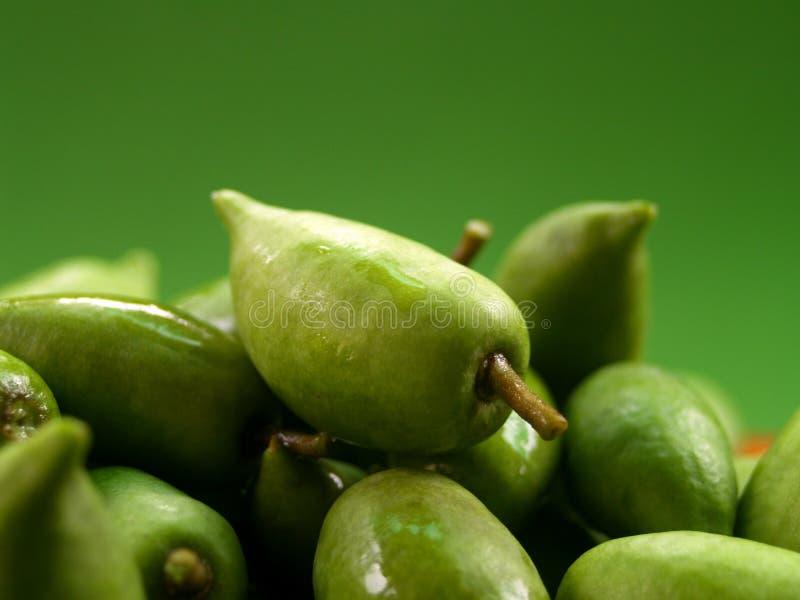 owoce 12 green obrazy royalty free