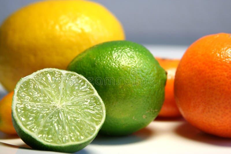 owoce cytrusowe fotografia stock