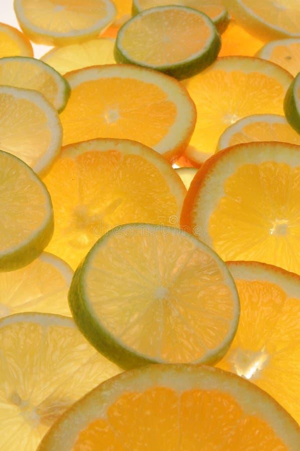 owoce cytrusowe plasterki zdjęcie stock