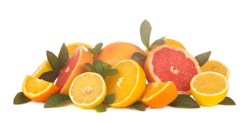 owoce cytrusowe różnorodne cytrus owoc z liśćmi cytryna, pomarańcze, grapefruitowa na białym odosobnionym tle obrazy royalty free