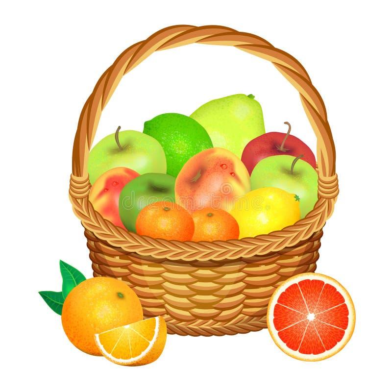 owoce koszykowe białe również zwrócić corel ilustracji wektora ilustracji