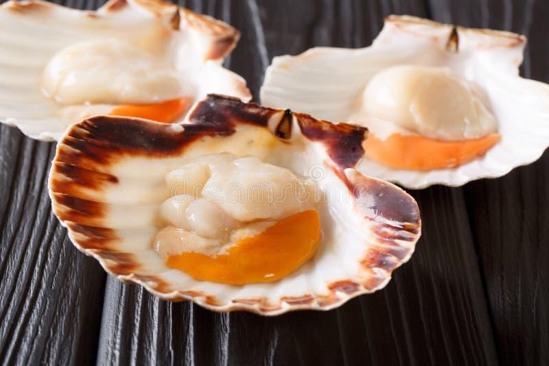 Owoce morza łuskanie Surowi królowa przegrzebki na czarnym drewnianym stole Ho zdjęcia royalty free