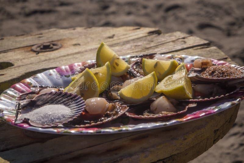 Owoce morza łuskanie Surowi przegrzebki z cytryną i solą obraz stock