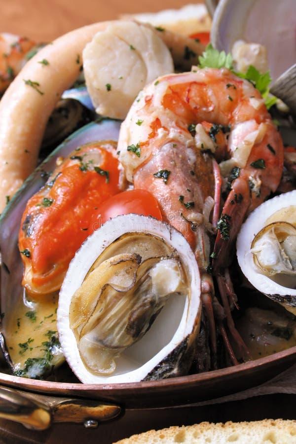 owoce morza obraz stock