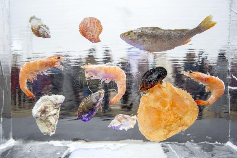 Owoce morza i ryba marznący w kostce lodu lodowe tło linie wzory 2007 lodowe Stycznia naturalnego ob Siberia konsystencja river zdjęcie stock