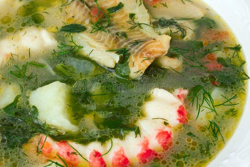 Download Owoce morza polewka zdjęcie stock. Obraz złożonej z ryba - 13341310