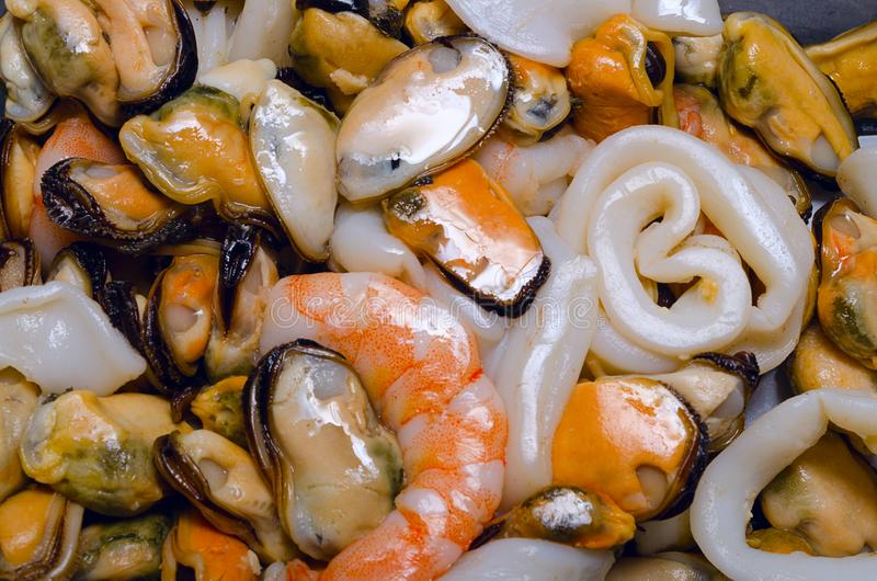 Owoce morza Owoce morza przygotowywający jeść owoce morza wybór zdjęcia royalty free