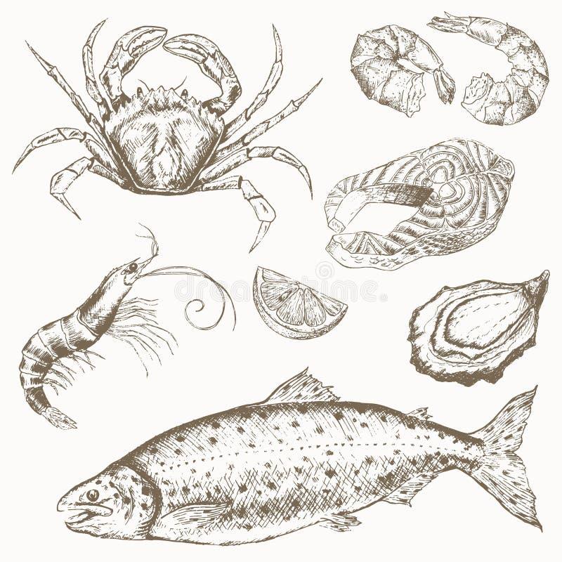 Owoce morza set royalty ilustracja