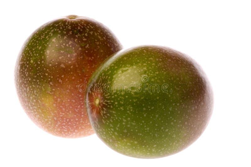 owoce odizolowana pasji zdjęcia stock