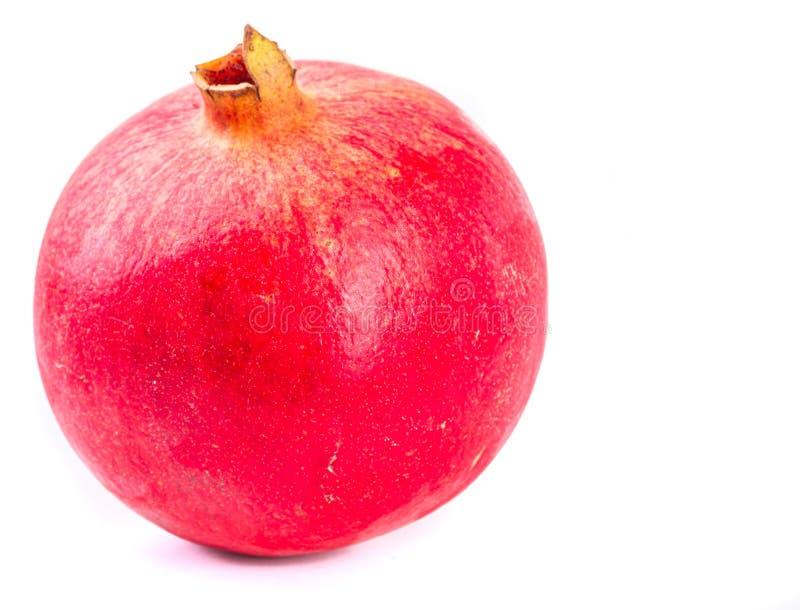 owoce tropikalne Kolorowi cytrusy Owoc z witamin? C Acidic owoc Dojrzali cytrusy kiwi t?a owoc?w cytryny grapefruitowej pomara?cz zdjęcie royalty free