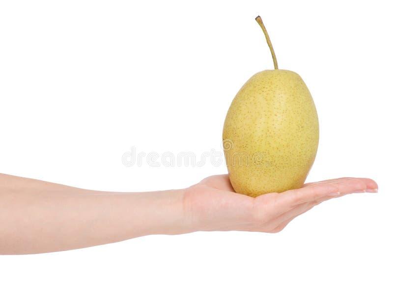 Owocowa hybrydowa jabłczana bonkreta w ręce zdjęcie royalty free
