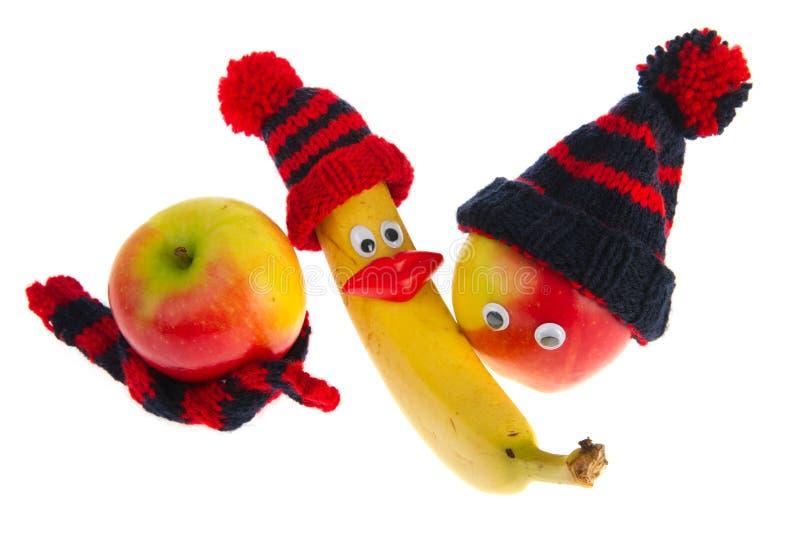 owocowa różnorodna zima obrazy stock