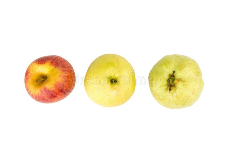 owocowy światła ruchu pojęcie jabłczanego tła odosobniony czerwony biel chiński bonkreta kolor żółty gua zdjęcia stock