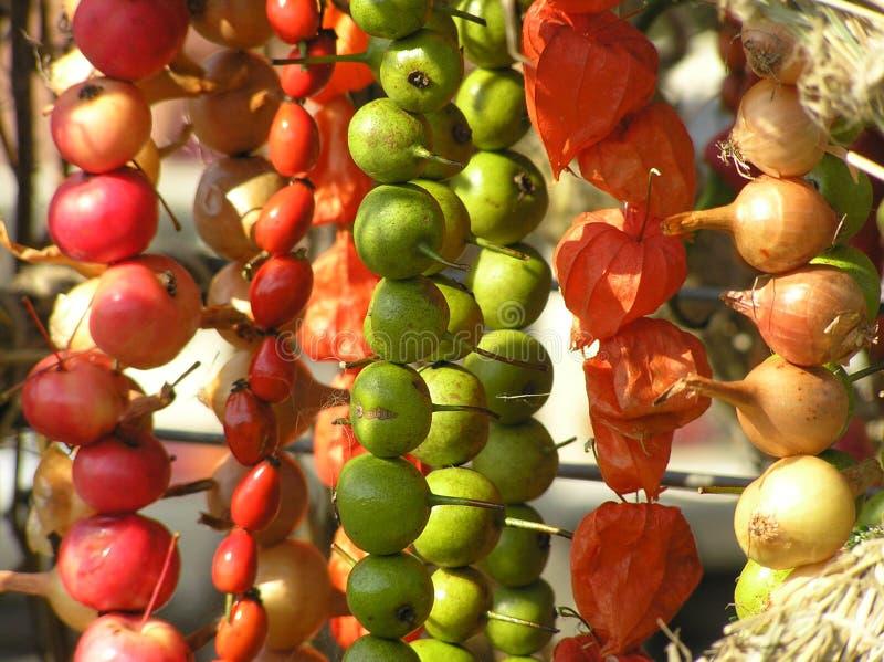 Owocowy i warzywa obrazy royalty free