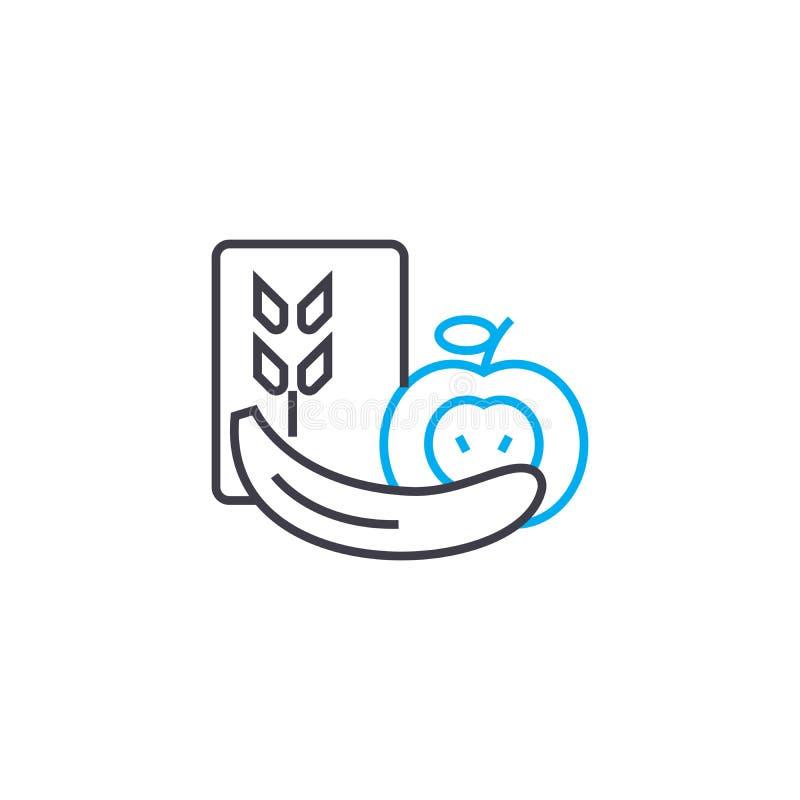 Owocowy liniowy ikony pojęcie Owoc wektoru kreskowy znak, symbol, ilustracja ilustracja wektor