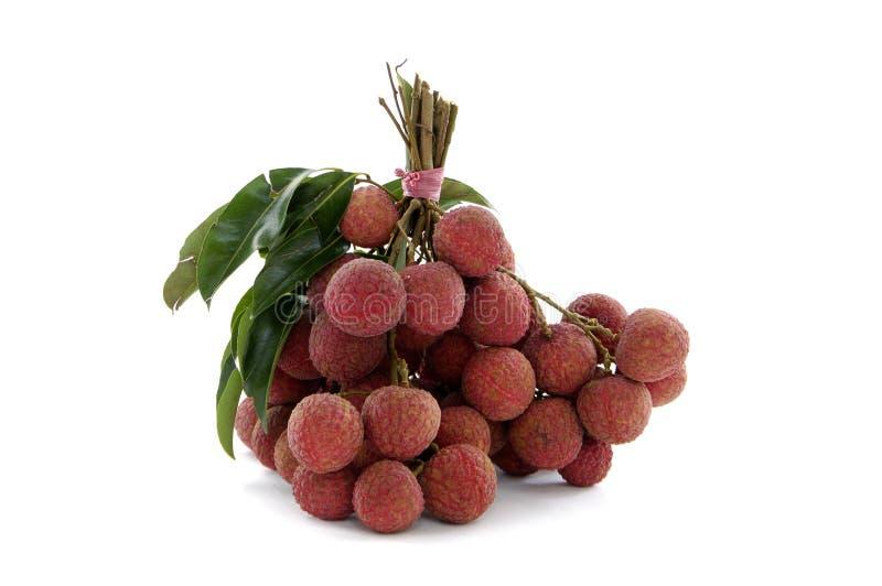 owocowy litchee obrazy royalty free
