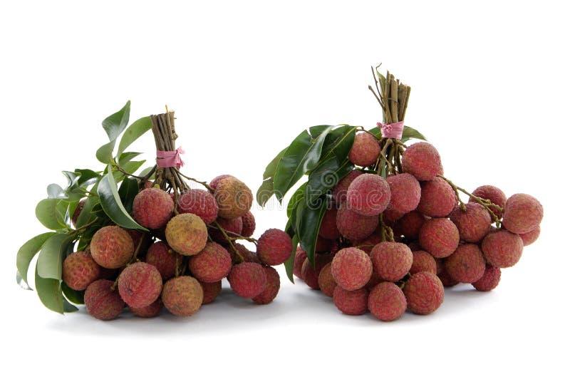 owocowy litchee obrazy stock