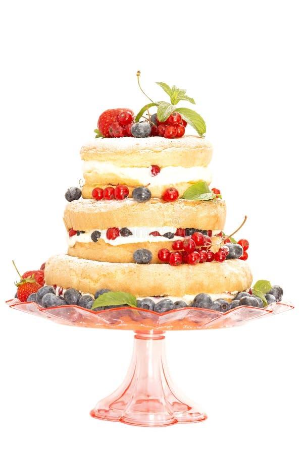 Owocowy nagi tort zdjęcia stock