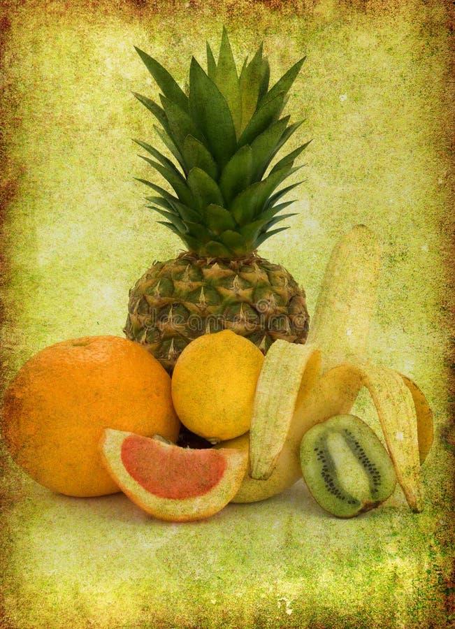 owocowy tropikalny zdjęcie stock