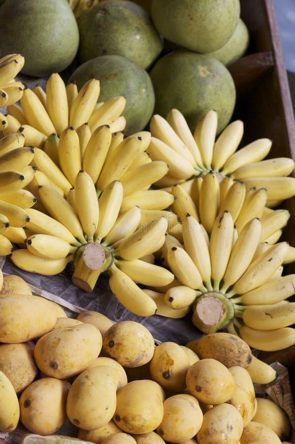 owocowy tropikalny zdjęcie royalty free