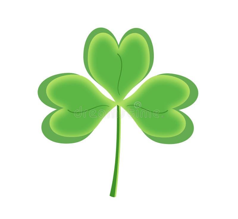 Oxalide petite oseille vert, trèfle irlandais, symbole du jour de St Patrick illustration libre de droits
