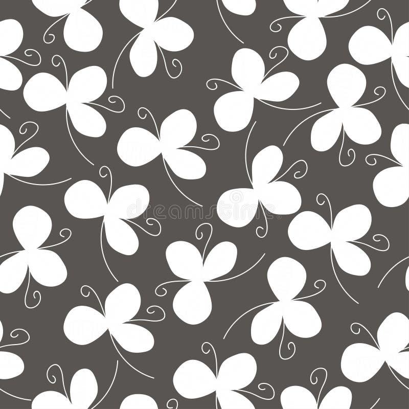 Oxalidex petite oseille blancs sur une couleur grise illustration libre de droits