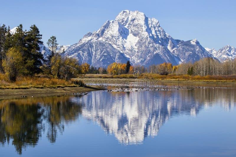 Oxbow-Biegung, die Berg Moran und Fallfarben kennzeichnet lizenzfreie stockfotos