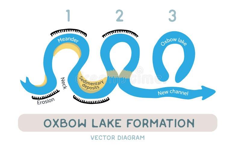 Oxbow jeziora formacja, wektorowy diagram royalty ilustracja