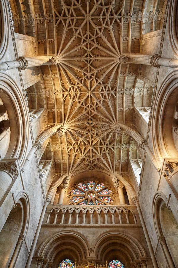 The ribbed vaulting of the chancel ceiling. Christ Church Cathedral. Oxford University. England royalty free stock photos