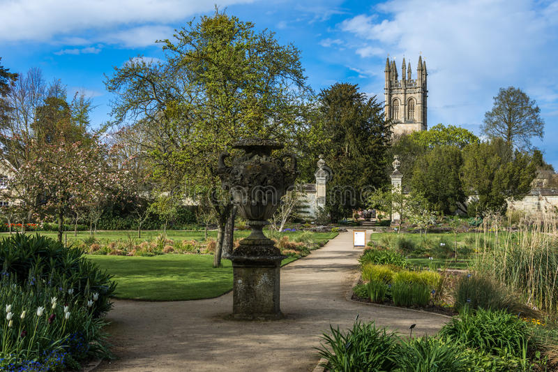 Oxford UK - 30 April 2016: Universitet av Oxford botaniska trädgårdar royaltyfria bilder