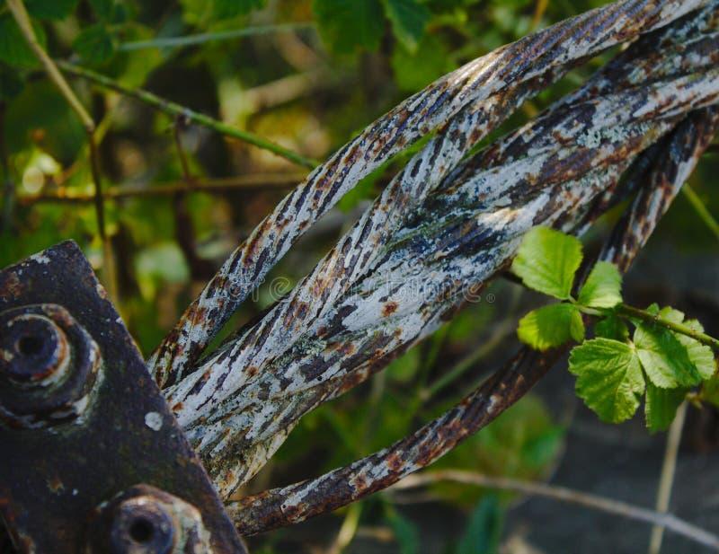 Oxidação e vegetação fotografia de stock