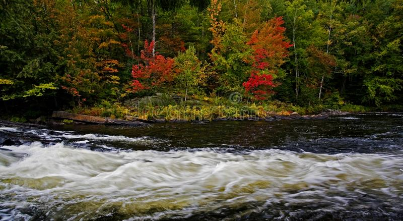 Oxtongue Rapids near Algonquin, Canada in autumn stock photography
