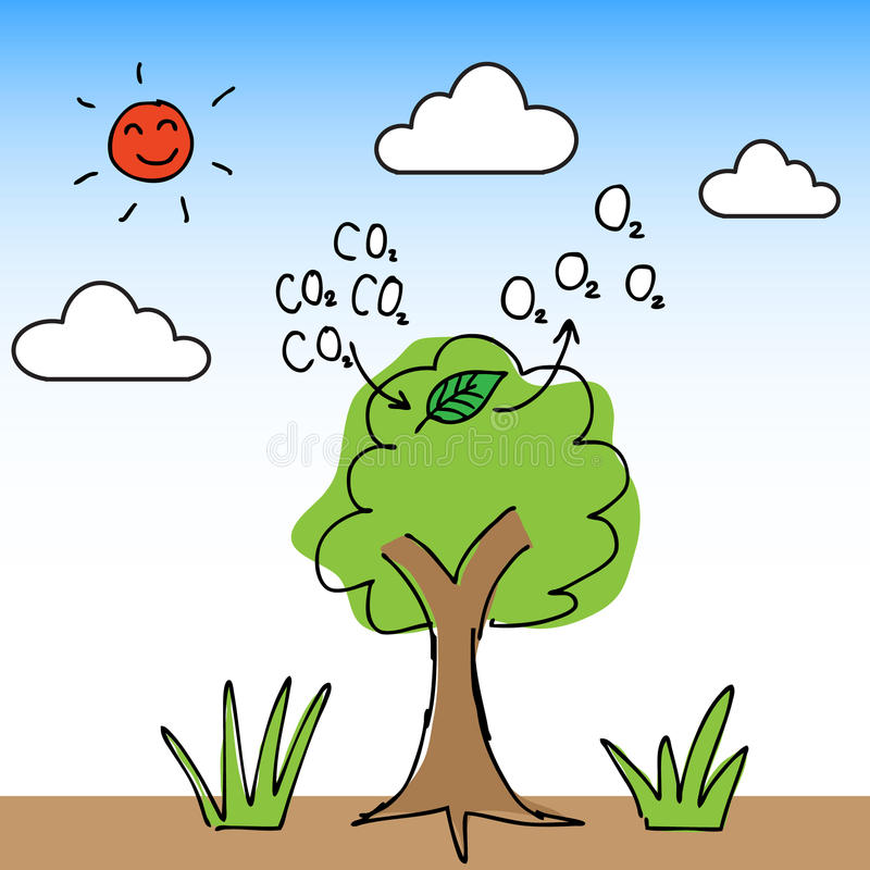 Oxygen Tree. Illustration of hand draw tree change carbon dioxide to oxygen vector illustration