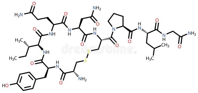 Oxytocin love hormone royalty free illustration