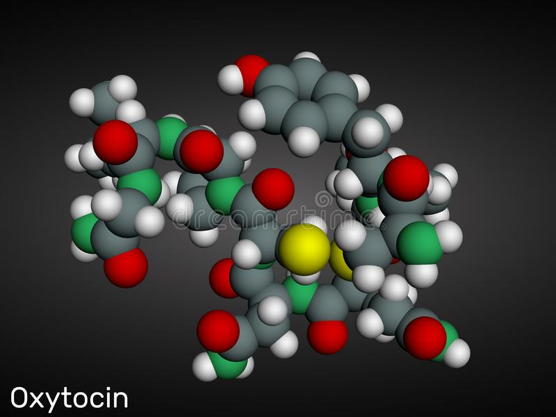 Oxytocin, Oxt, peptide hormone and neuropeptide molecule. Structural chemical formula royalty free illustration