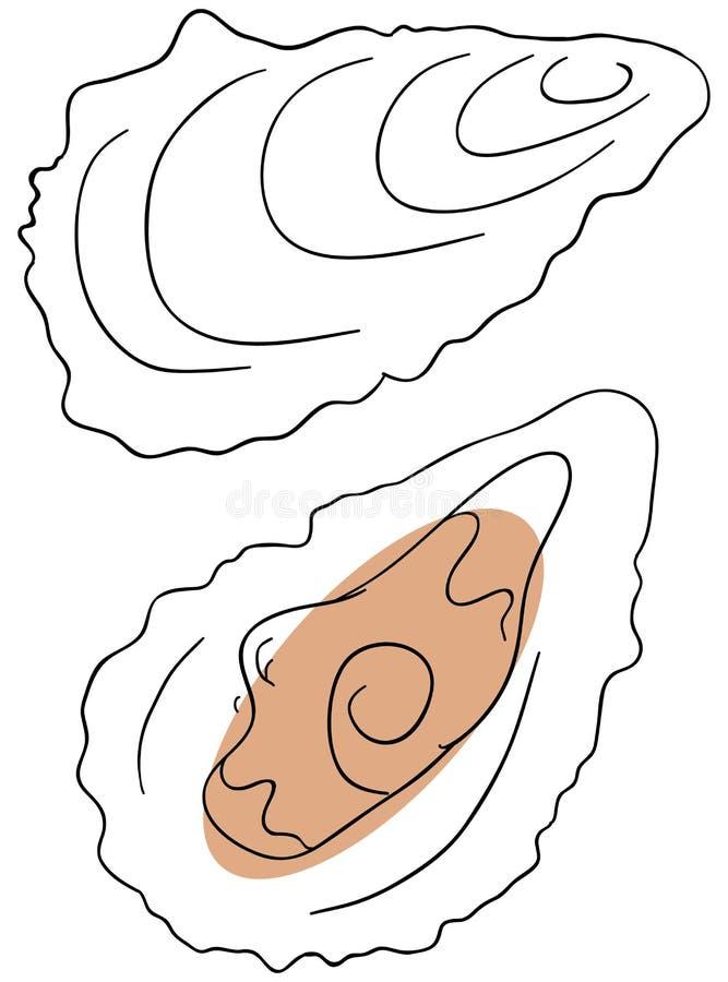 Oyster stock illustration