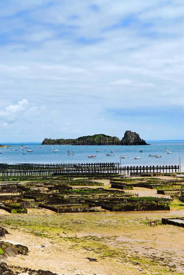 Download Oyster Beds In Cancale, France Stock Images - Image: 3259374