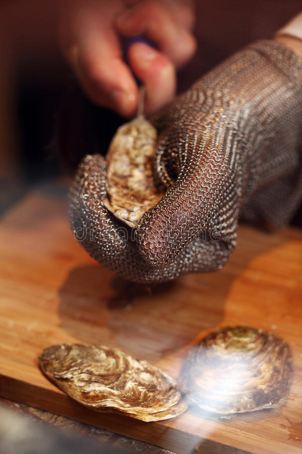 Oyster being prepared. Photo of a man in chain gloves preparing oyster royalty free stock photography