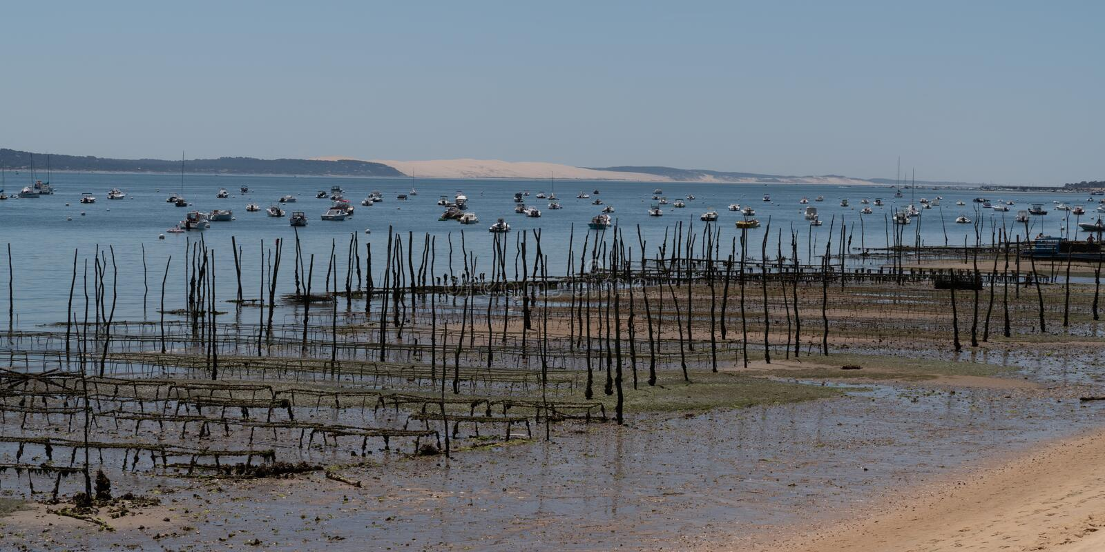 Oyster farm in Cap Ferret with Arcachon Dune du Pilat view in web template banner France. An Oyster farm in Cap Ferret with Arcachon Dune du Pilat view in web royalty free stock photo