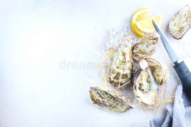 Oyster. Fresh oysters closeup with knife. Oyster dinner in restaurant. Gourmet food. Border design with copy space for your text. Top view, flatlay stock photos