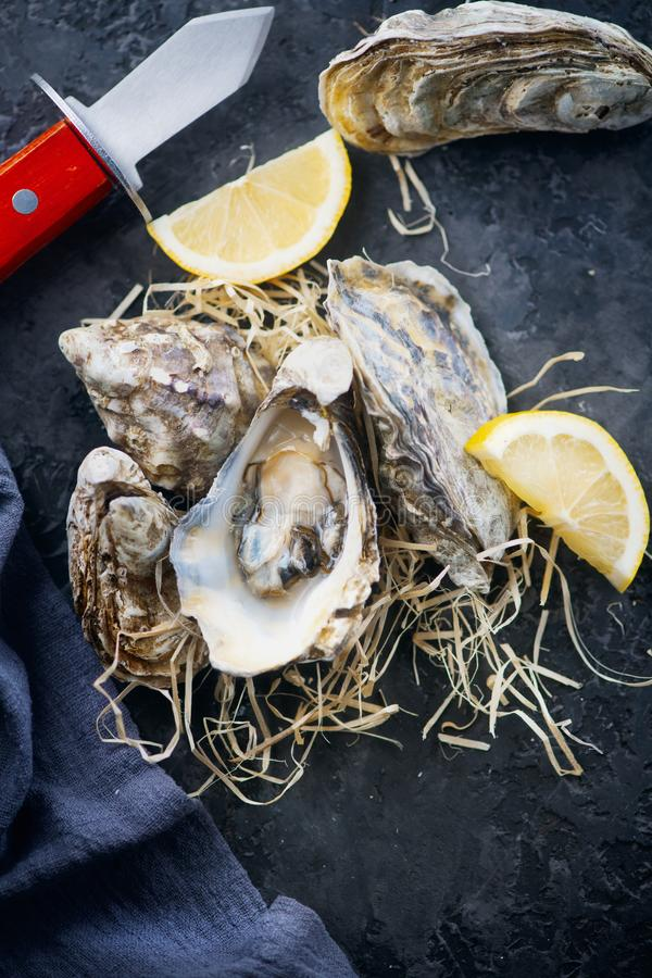 Oyster. Fresh oysters closeup with knife. Oyster dinner in restaurant. Gourmet food. Top view, flatlay royalty free stock photography