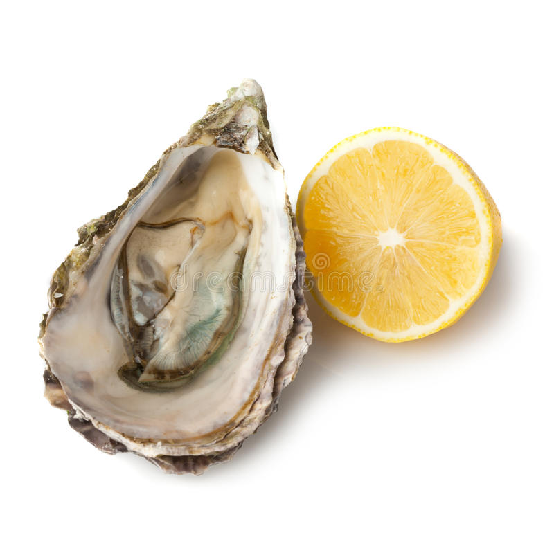 Download Oyster and Lemon stock photo. Image of food, sliced, isolated - 17035108