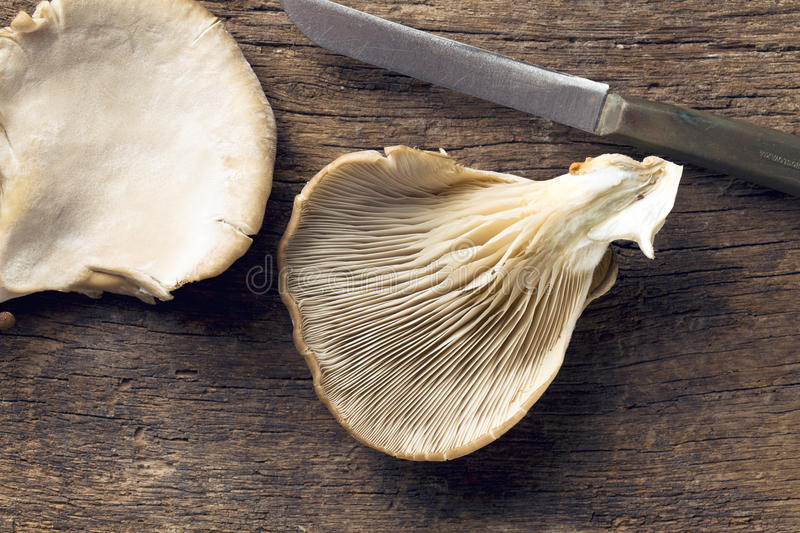 Oyster mushroom. On wooden table stock photo