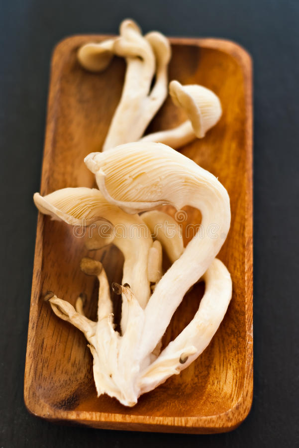 Download Oyster Mushrooms Stock Photo - Image: 11725390