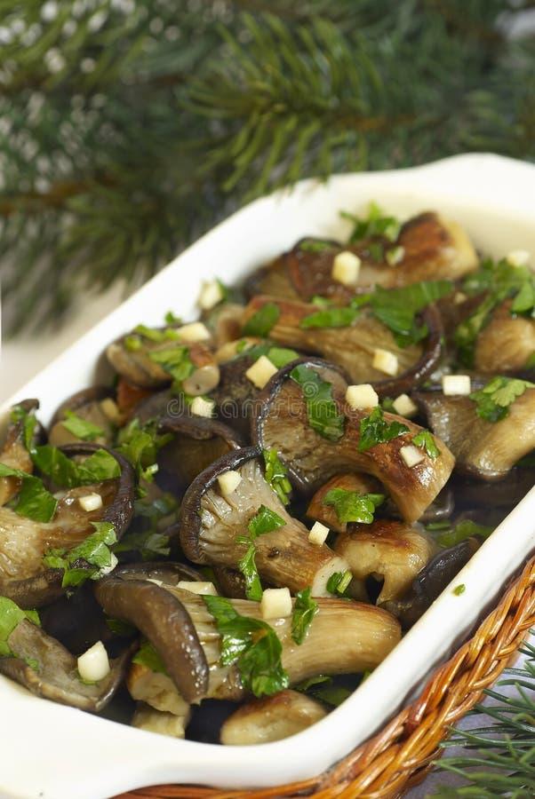Oyster mushrooms stock photo
